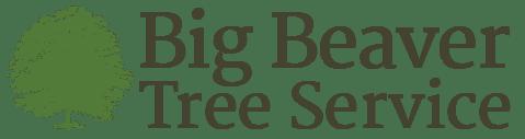 Big Beaver Tree Care